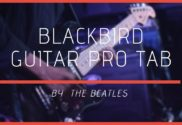 blackbird guitar pro