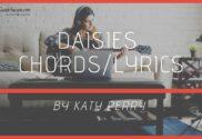 daisies chords